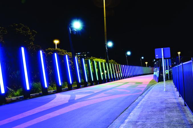 AKL cycleway2